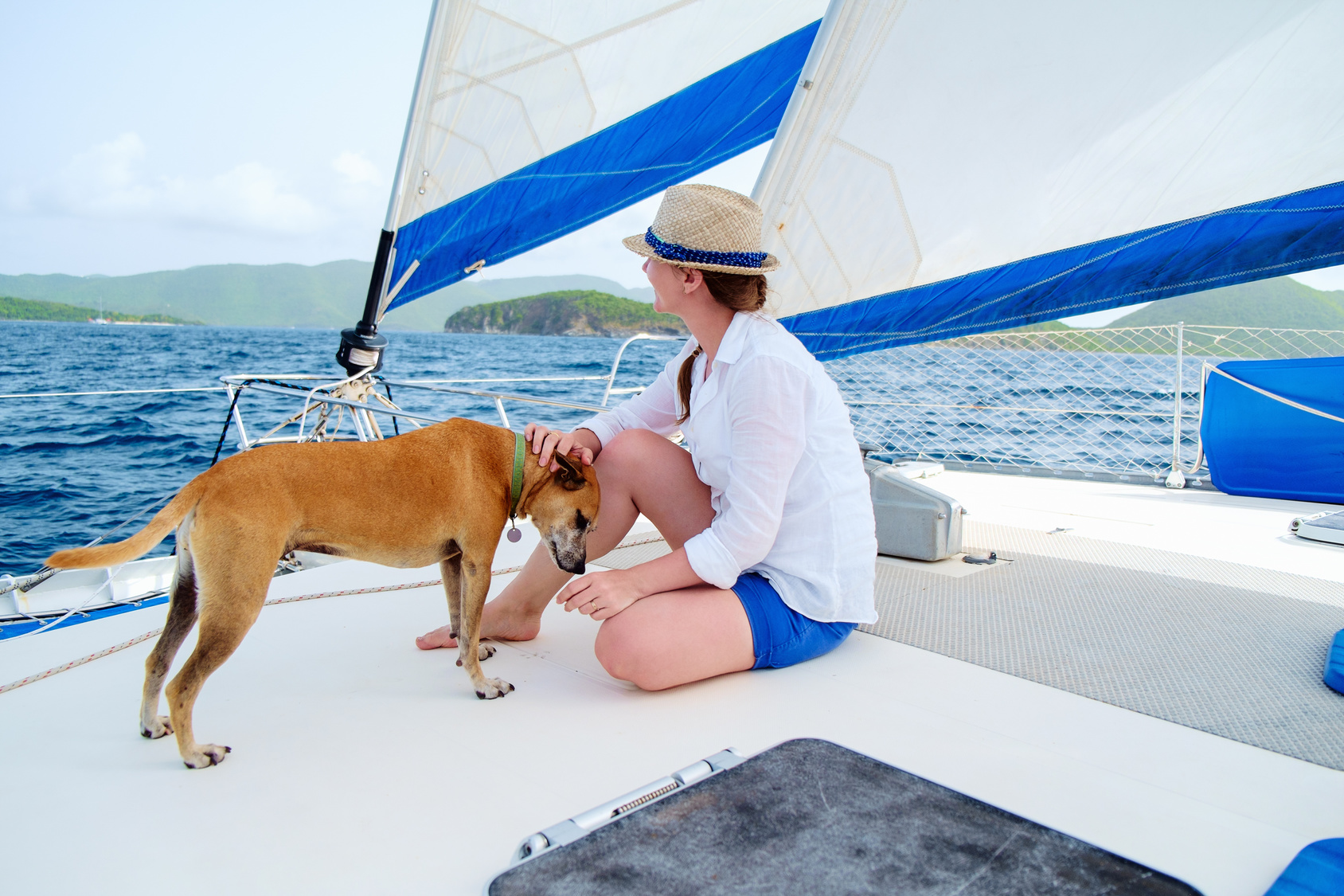 Sailing with a pet